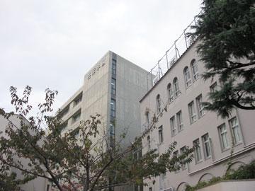 中学 桜 蔭